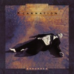 Xcarnation - Grounded