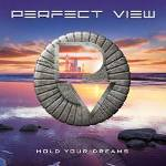 Perfect View - Hold Your Dreams